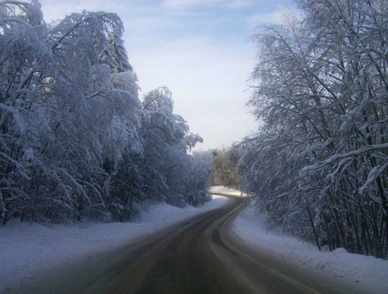 Rogosi Manor Guest House: Snowy road