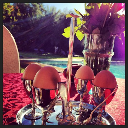 Dar Ayniwen Villa Hotel: Breakfast