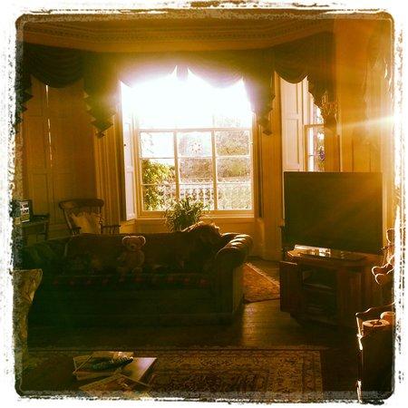 Powis House : Living room