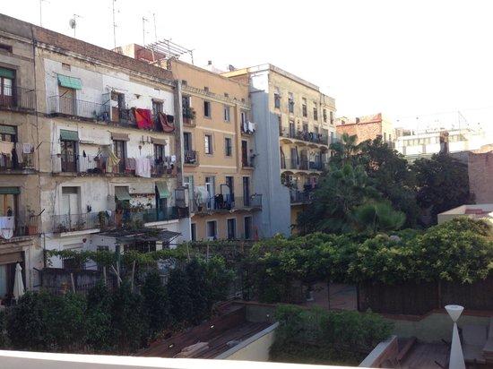 Catalonia Port: View towards garden/backyard