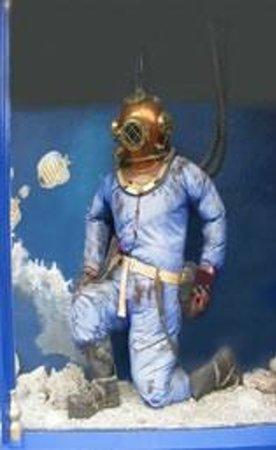 Matlock Bath Aquarium & Exhibitions: Our life sized diver in our entrance window.