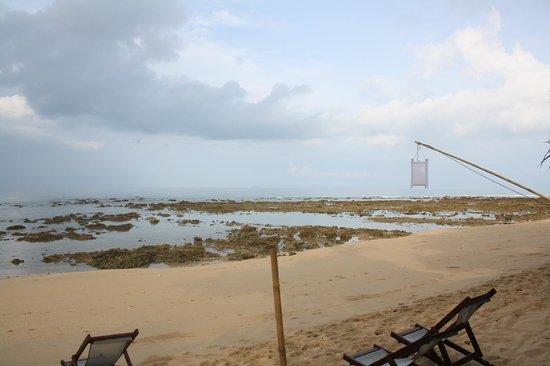 Coco Lanta Resort : Anche con la bassa marea, meraviglioso