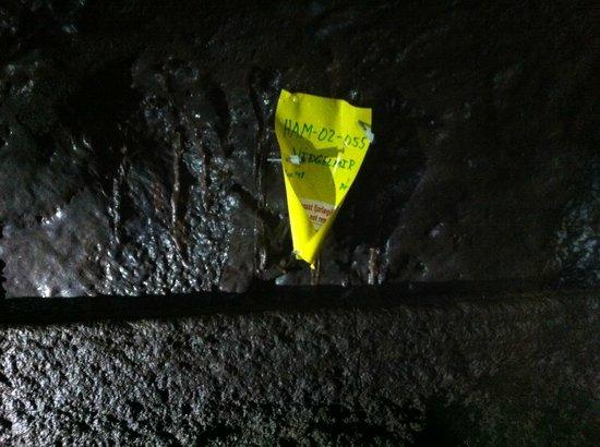 Fljotstunga Cave Tours: Yes, it`s Vidgelmir!