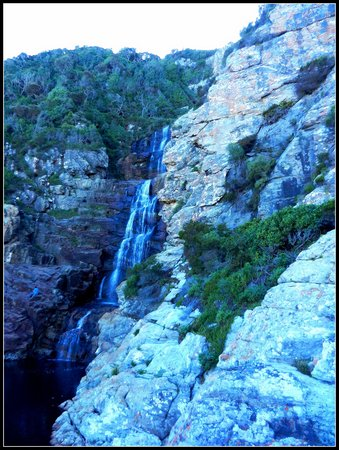 """Tube 'n Axe Backpackers Lodge: The """"start"""" of the Otter Trail Walk ... to the waterfall"""