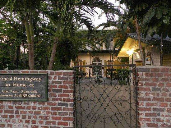 Duval Street: ...la casa di hemingway....