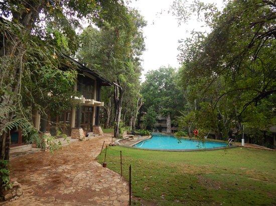 Deer Park Hotel : la piscina