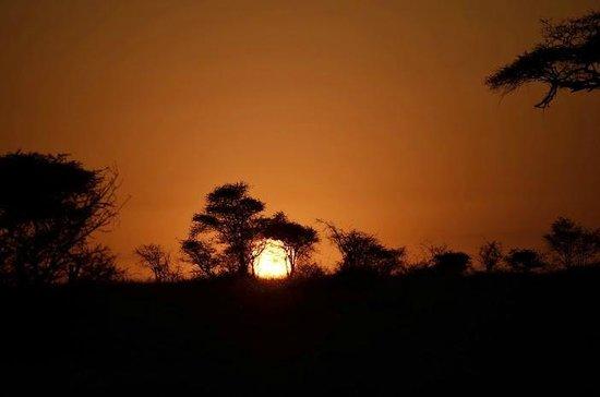Pumzika Safari Camp: amanecer