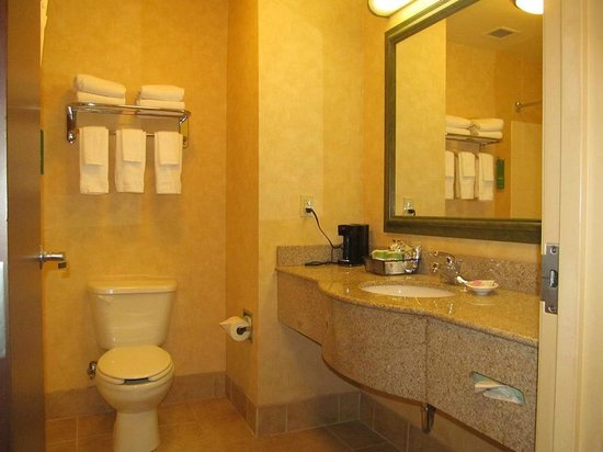 Hampton Inn & Suites Dothan: Bathroom