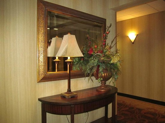Hampton Inn & Suites Dothan: Hallway decor ... nice