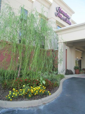 Hampton Inn & Suites Dothan - UPDATED 2018 Prices & Hotel Reviews ...