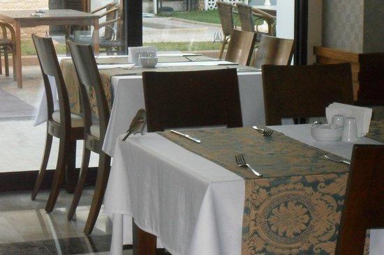Aura City Hotel : sala da pranzo