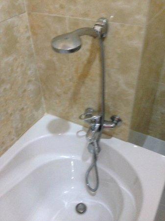 Hotel 20th Street : Dwarf Height Shower
