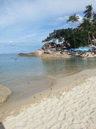 Buri Rasa Koh Phangan: Beach view