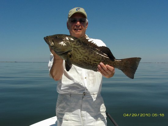 Tampa bay grouper picture of tampa bays fishing charter for Charter fishing tampa