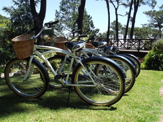 Josephine Boutique Hotel: Bicicletas free para nuestros pasajeros