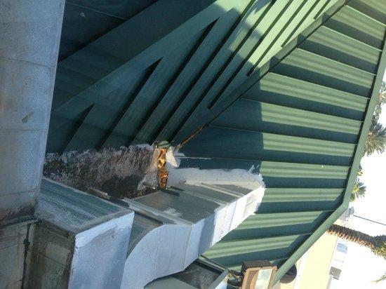 Hilton Garden Inn Tampa Northwest / Oldsmar: View from Room 208