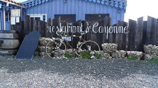 Le Cayenne : Zoom sur le vélo