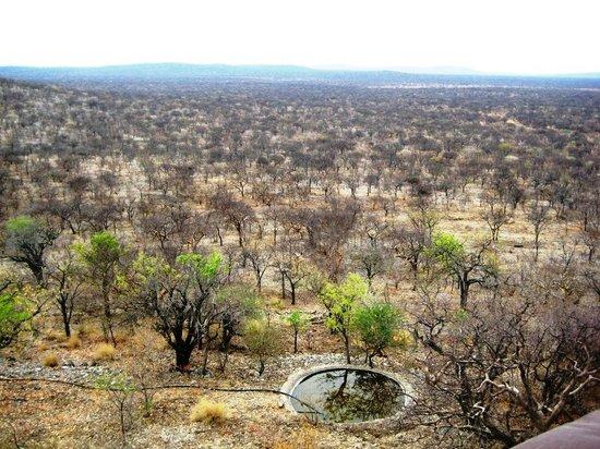 Etosha Safari Lodge : Aussicht von der Hotelterrasse