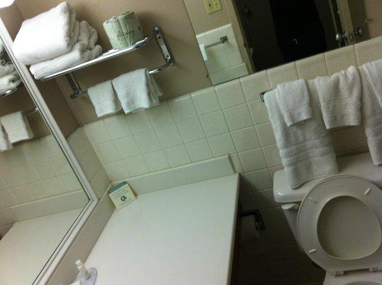 General Nelson Inn: Bathroom