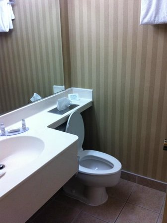 Breckinridge Inn : Bathroom
