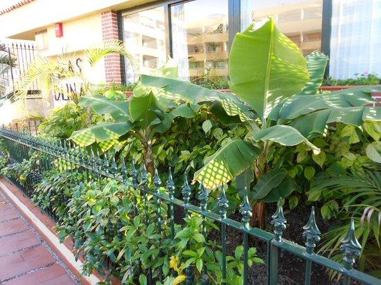 Apartamentos Las Dunas : Entering Las Dunas