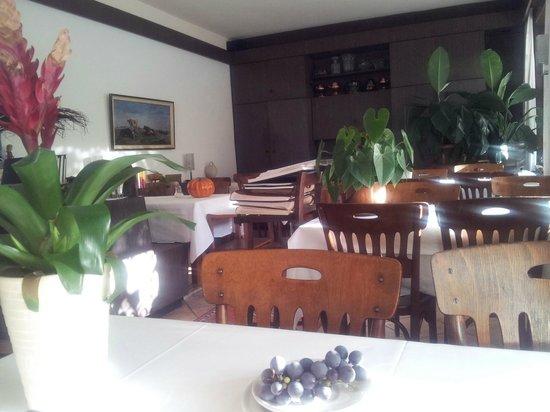 Hotel Villa Selva: Comedor
