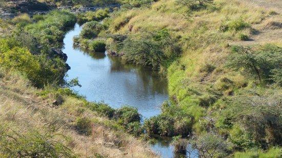 Amani Mara Camp : the view from Amani Mara- incredible!