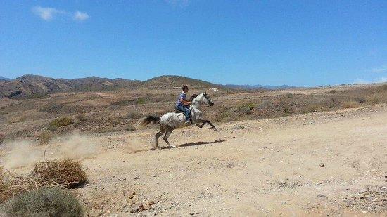 El Salobre Horse Riding : The owner Jose with Atila!