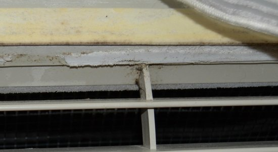 TownePlace Suites by Marriott Columbia SE/Fort Jackson : mold and mildew on A/C-heating unit?