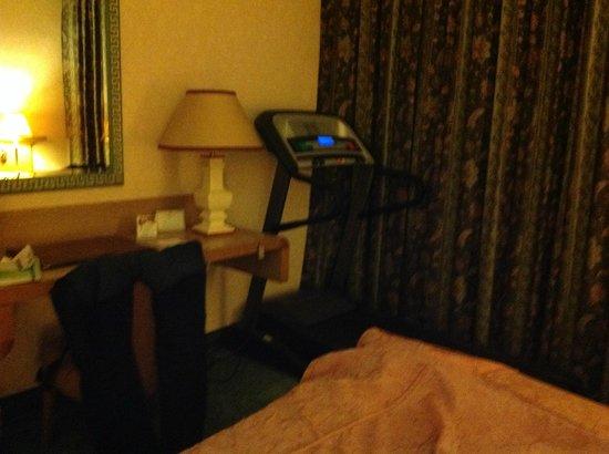 Perugia Plaza Hotel: zona fitness in stanza