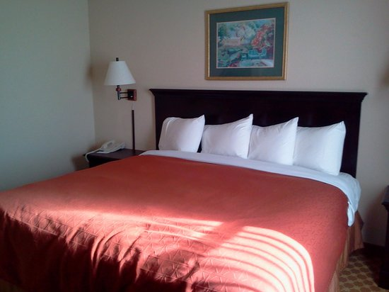 Country Inn & Suites By Carlson, Columbus: king suite