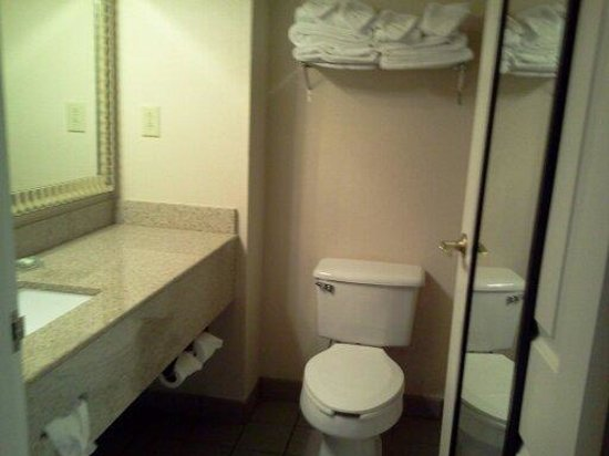 Country Inn & Suites by Radisson, Columbus, GA: small bathroom