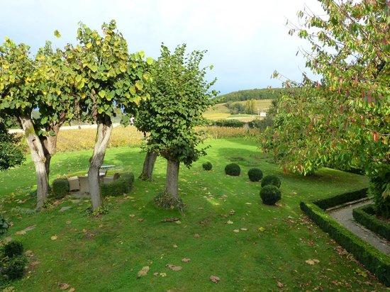 Villa Louise : Vista dos vinhedos da janela do quarto