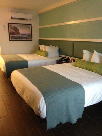 Jaybird's Inn : Nice and comfy beds, room 103