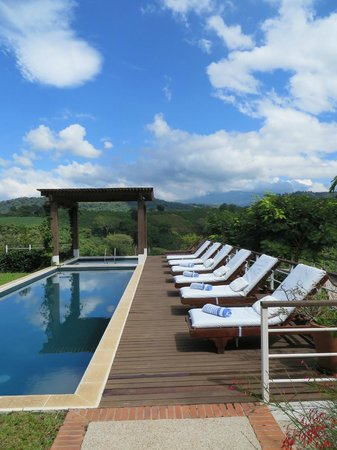 Asclepios Wellness & Healing Retreat: pool and chairs