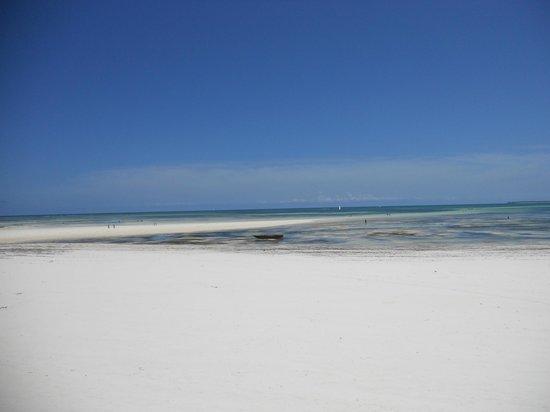 The Beach: lingua di sabbia davanti al B&B