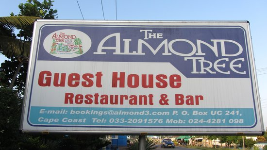 The Almond Tree Guest House : L'insegna