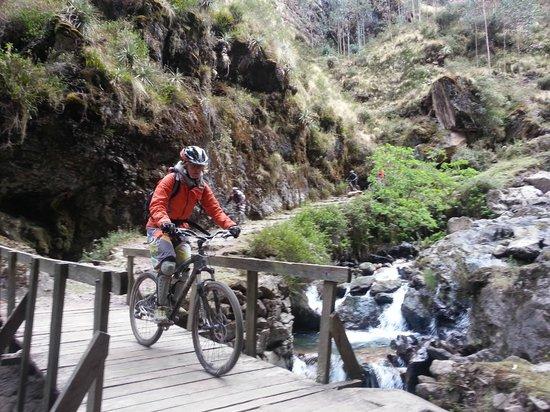 Quechua Bikes