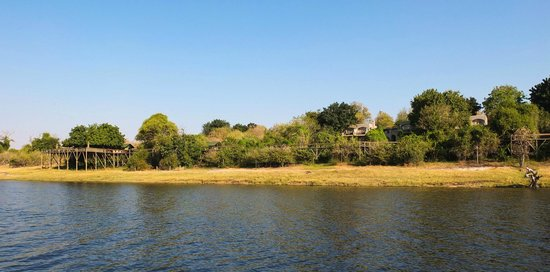 Chobe Game Lodge : View from the Water
