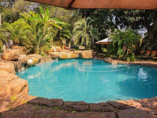 Chobe Game Lodge: The Pool