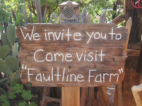 29 Palms Inn: Eimngang zur Gärtnerei, Besucher willkommen