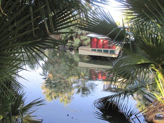29 Palms Inn: Der Quelltopf