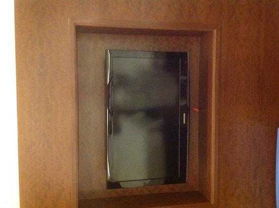 AETAS lumpini: televisor en la pared