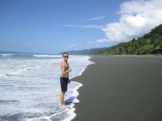 Lookout Inn Lodge: beach