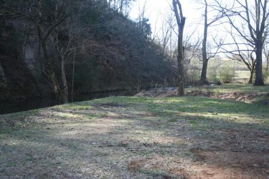 David Crockett State Park: The park's photo of our campsite