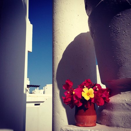 Surf Riders Fuerteventura: como en casa...