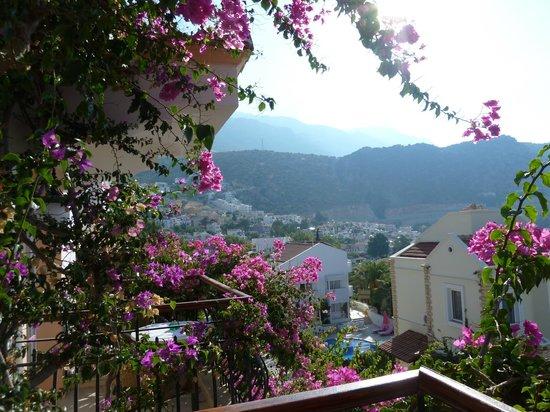 Korsan Apartments: View from No 5
