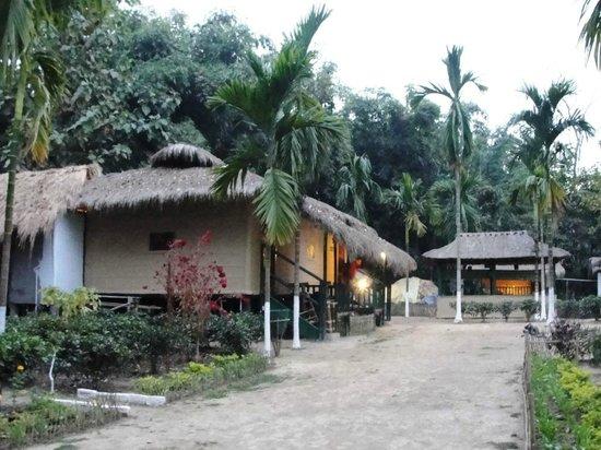 Nature Hunt Eco Camp, Kaziranga National Park: Morning View