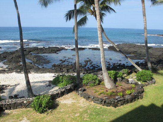 Castle Kona Bali Kai: Tidal pool where the sea turtles came in every day to rest on the rocks