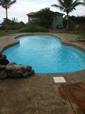 Maui Ocean Breezes : Salt water pool